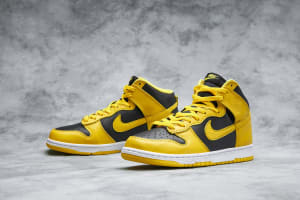 Nike Dunk Hi SP