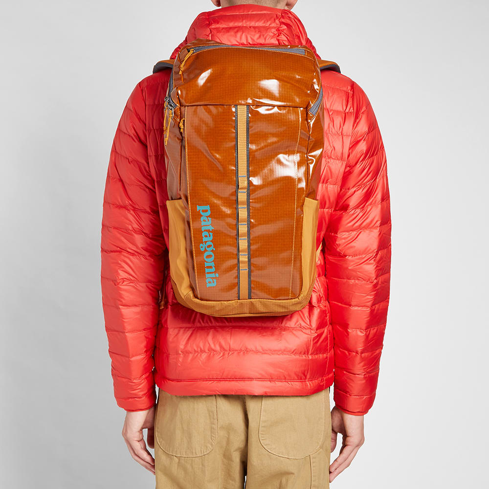 Patagonia Black Hole Pack Hammonds Gold End
