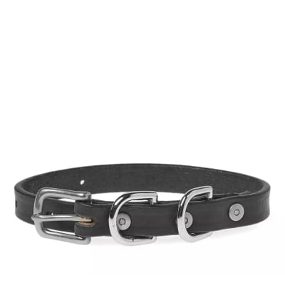 Tanner Goods Narrow Canine Collar