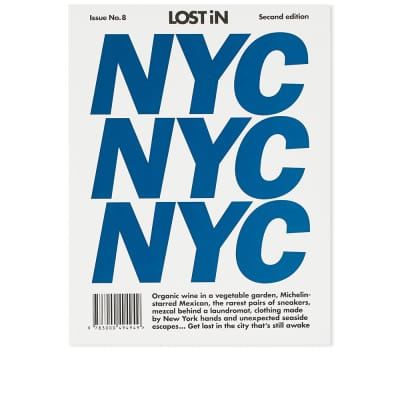 Lost In New York City Guide
