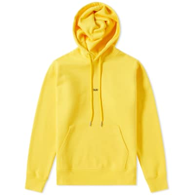 Helmut Lang Taxi Hoody