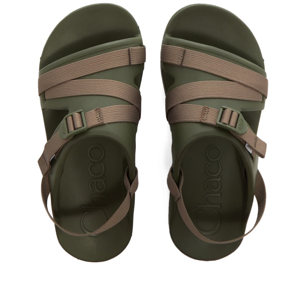 Chaco Chillos Sport - Moss