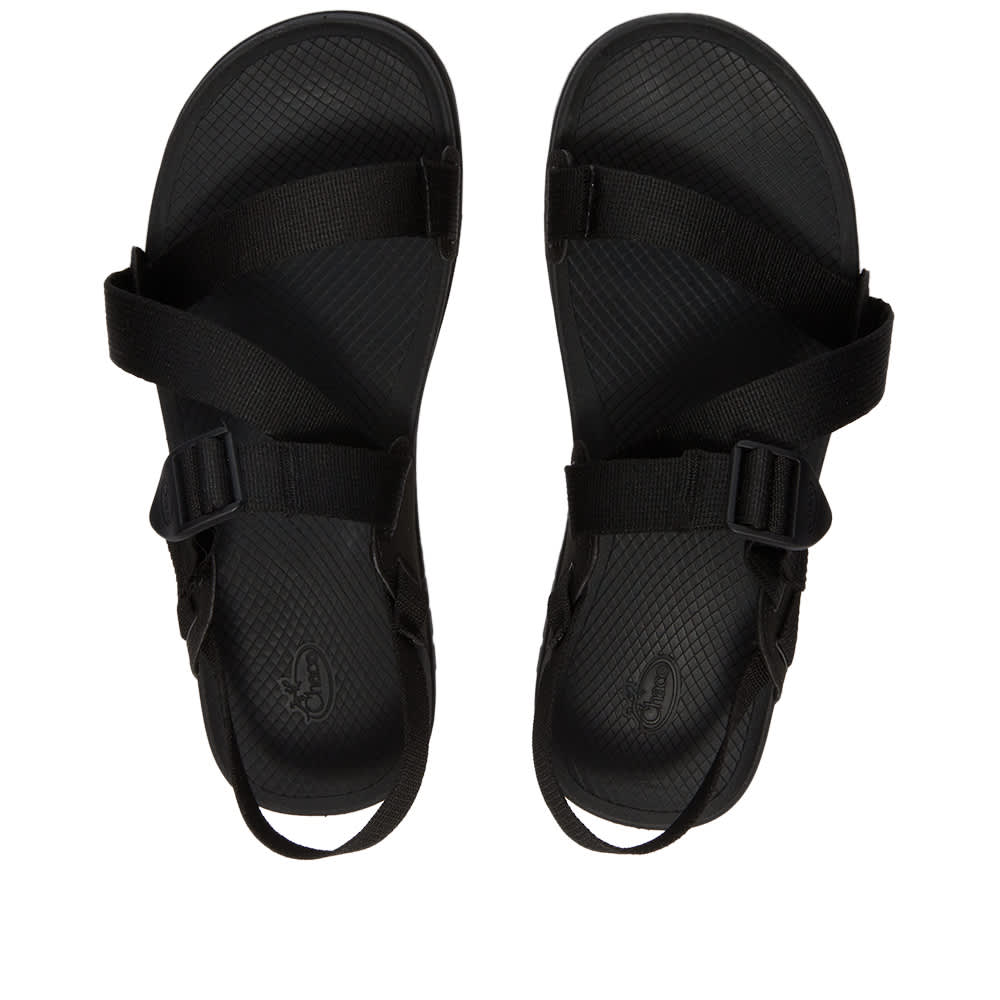 Chaco Lowdown Sandal - Black