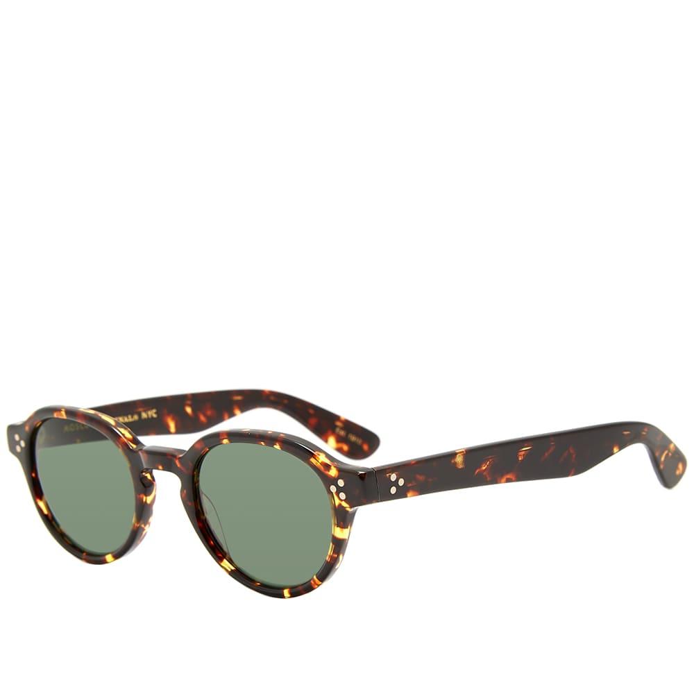 Moscot Ezra Sunglasses - Dark Havana & G-15
