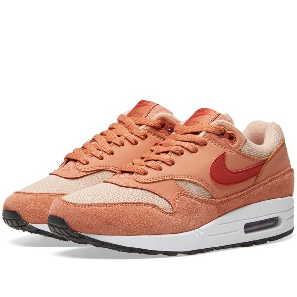 Nike Wmns Air Max 1 319986 205